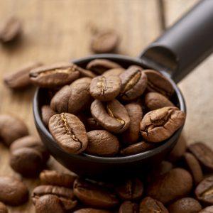 פולי-קפה-מומלצים